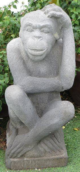 Apina miettimässä