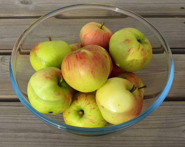 Omena taipuu maukkaasti sekä suussa että paperilla