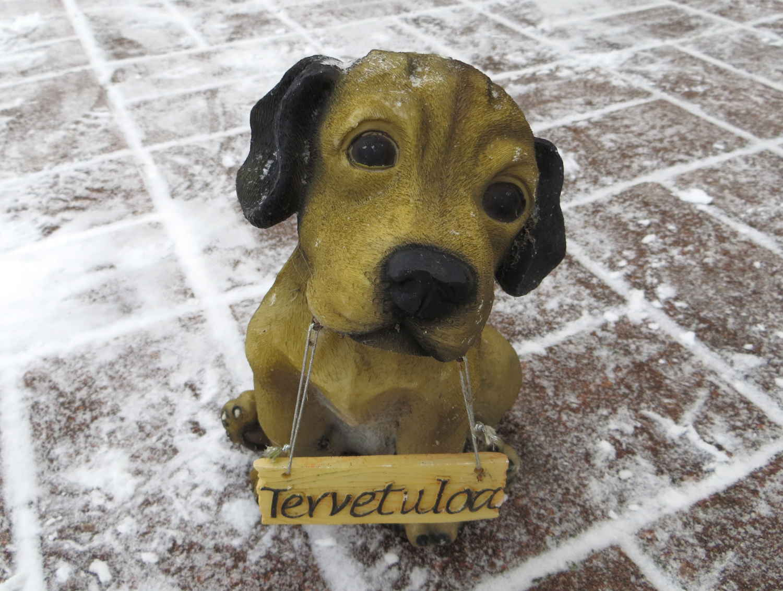 Tervetuloa-koira
